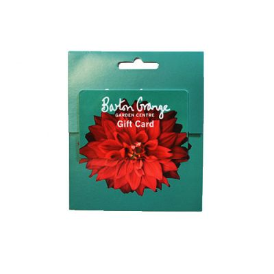 £50 Red Dahlia Design Gift Card - image 1
