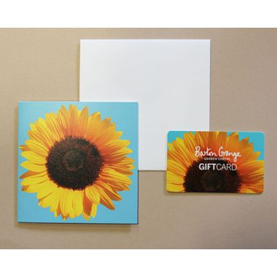 £50 Sunflower Design Gift Card - image 2