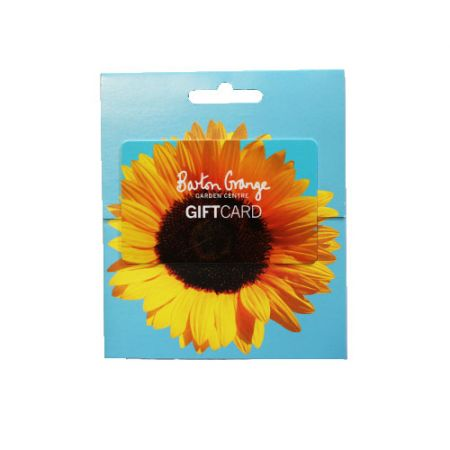 £50 Sunflower Design Gift Card - image 1